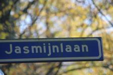 jasmijn